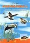 Napsugárka I. Környezet és természetvédelmi rejtvények általános iskolások részére